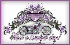 Harley Davidson Stickers, Harley Davidson Shop, Harley Davidson Quotes, Harley Davidson Images, Harley Davidson Motorcycles, Indian Motorcycles, Steve Harley, Wednesday Greetings, Harley Tattoos