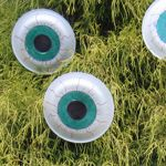 Google Image Result for http://www.chicaandjo.com/wp-content/uploads/2012/10/Monster_Eyes_Thumb.jpg