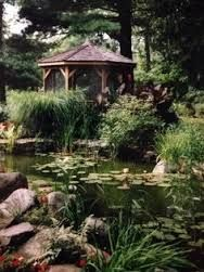 Image result for gazebo and deck overlooking koi pond