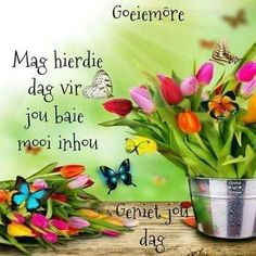 Goeie more Morning Blessings, Good Morning Wishes, Good Morning Quotes, Lekker Dag, Afrikaanse Quotes, Goeie Nag, Goeie More, Good Morning Flowers, Morning Greeting