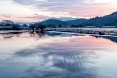 우포(woo-po)의 새벽.