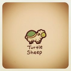 Turtle Sheep Print