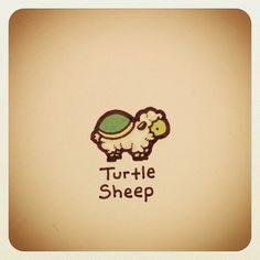 Turtle Sheep Print