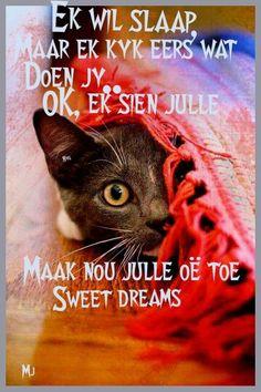 Ek wil slaap Good Night Sleep Tight, Goeie Nag, Afrikaans Quotes, Good Night Sweet Dreams, Night Wishes, Good Night Quotes, Strong Quotes, Friend Pictures, True Friends