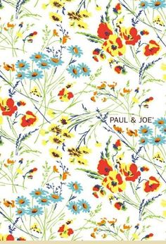 paul & joe flowers