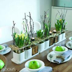 Bildergalerie :: BLOOM's :: Deko-Ideen mit Blumen und Pflanzen