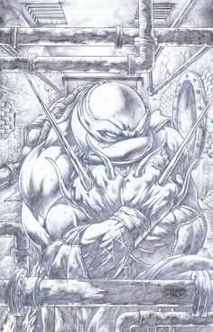 Teenage Mutant Ninja Turtles - Raphael by Emil Cabaltierra Comic Books Art, Comic Art, Book Art, Ninja Turtles Art, Teenage Mutant Ninja Turtles, Desenho Tattoo, Gi Joe, Tmnt, Cool Artwork
