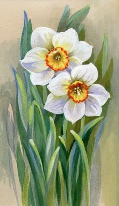 c - Painting Media Acrylic Painting Flowers, Watercolor Flowers, Watercolor Paintings, Tulip Painting, Black Square Painting, Art Mignon, Watercolor Projects, Botanical Prints, Daffodils