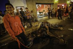 Se desploma caballo en la #expogansonora2014