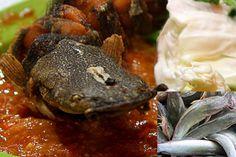 Resep pecel lele lengkap dengan sambal dan lalapan. resep sambal pecel lele lamongan, resep sambal pecel lele pinggir jalan, resep sambal pecel lele lela, resep membuat sambal pecel lele, resep sambal pecel lele kremes, resep sambal pecel lele jawa timur, resep sambal pecel lele sedap, resep sambal pecel lele paling enak - Resep Masakan Indonesia - Indonesian Food Recipes - Indonesian cuisine