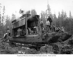 Crew and donkey engines on skids loaded on railroad flatcars, Simpson Logging Company, probably in Mason County, n. - Kinsey Brothers Photographs of the Lumber Industry, - University of Washington Digital Collections Logging Equipment, Heavy Equipment, Old Photos, Vintage Photos, Giant Tree, Big Tree, Mason County, Timber Logs, Steam Engine