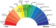 """""""Regular"""" coffee is acidic, can cause heart burn, inflammation, high blood pressure, and raises cortisol hormone levels which prevent weight loss. It's in the yellow. Javita's coffee is NOT ACIDIC (it would be in the """"green). It's infused with a proprietary blend of herbs that balance your PH. When the body is in an alkaline state, it's impossible for disease to exist. You want to eat and drink foods that help to put your body in an alkaline state. http://www.myjavita.com/perkupyourlife"""