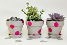 Blumentöpfe selber dekorieren stickers farbige pünktchen