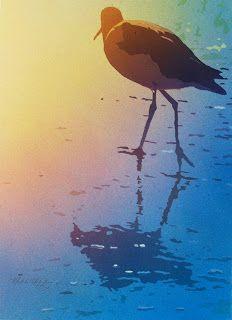 Willet in Morning light by Mark Mehaffey