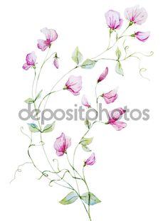 depositphotos_70633383-Nice-watercolor-flowers.jpg (774×1023)