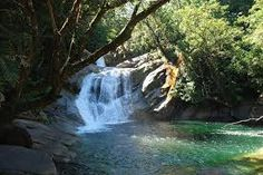 Hidden away in the lush forest of the Sunshine Coast Hinterland area. You'll find a secluded treasure that's not on the tourist guide. Staying at one of our Sunshine Coast Resorts will have you within walking distance of the falls and many other magical locations. http://www.catalinaresort.com.au/