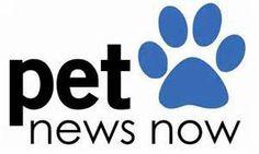 PET NEWS  http://ajreedy.wordpress.com/