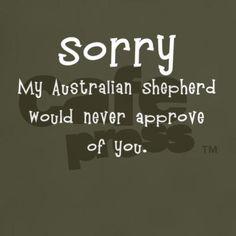 Sorry My Australian Shepherd T-Shirt on CafePress.com
