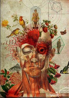 Diego Max, Brazilian artist, graphic designer and illustrator
