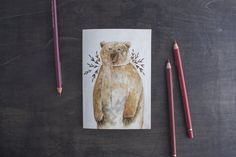 Brown Bear Notebook. Blank Plain Page Notebook. Woodland