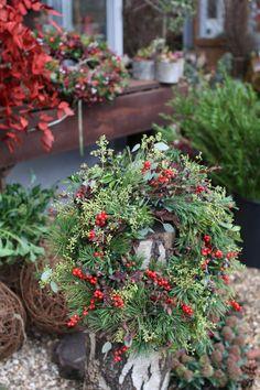 Florist Friday : Visiting Zita Elze's beautiful shop in Kew - Christmas 2015   Flowerona