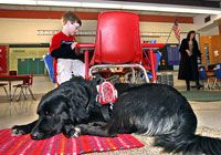 """Nine Ways How Special Dogs are Helping Children with Special Needs - """"dogs are now allowed in schools to help students with special needs feel more secure, happy, and in return more apt to learn"""""""