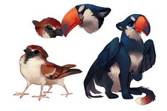 Sparrow and Toucan by fancypigeon on @DeviantArt