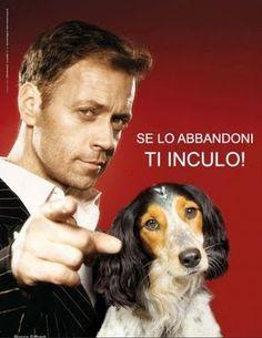 Rocco !