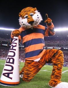 Iron bowl Aubie - I love him! Sec Football, Auburn Football, Auburn Tigers, Football Season, College Football, Football Decor, Auburn Game, Auburn Vs, Iron Bowl