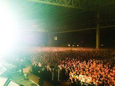 『COUNTDOWN JAPAN 15/16』の時のBUMPちゃんとオーディエンスちゃんです皆さん良いお正月を
