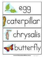 Butterfly Preschool Printables: Lifecycle, Charts, Learning Centers, Games, Worksheets and more