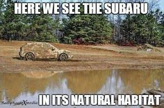 "i wish there was a ""natural habitat"" locally i could take my Subaru to..... clean subaru's look good, but dirty subaru's look even better XD"
