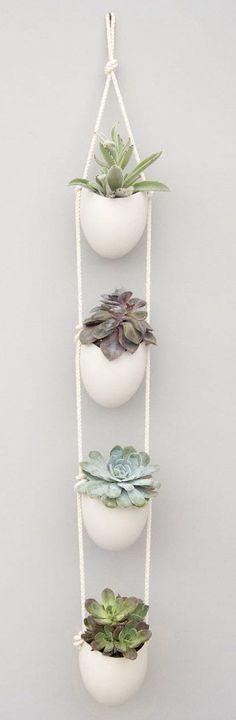 Macetas colgantes para plantas de intemaria rior