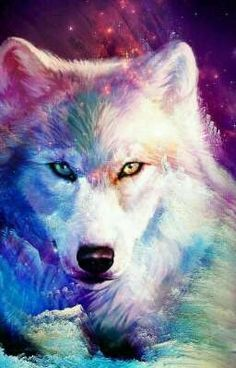 Ideas For Wallpaper Galaxy Wolf wallpaper 820710732077631336 Cute Animal Drawings, Cute Drawings, Colorful Animals, Cute Animals, Galaxy Wolf, Wolf Artwork, Wolf Painting, Fantasy Wolf, Wolf Spirit Animal