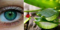 Dile adios a tus lentes y mejora tu vista con esta increible receta casera
