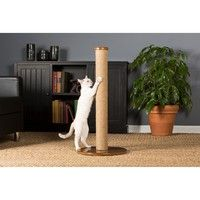 Prevue Pet Products Kitty Power Paws Tall Round Cat Scratching Post 7100 providesa dedicated place f