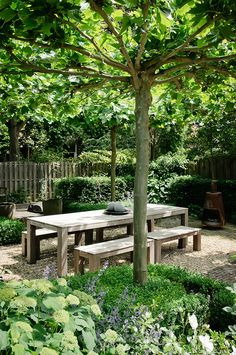 Simple table and benches De geheime tuin
