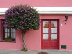 Image result for pink house with red door