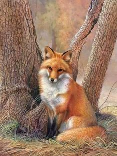 Sitting Pretty by Joni Johnson-Godsy. Beautiful fox painting.