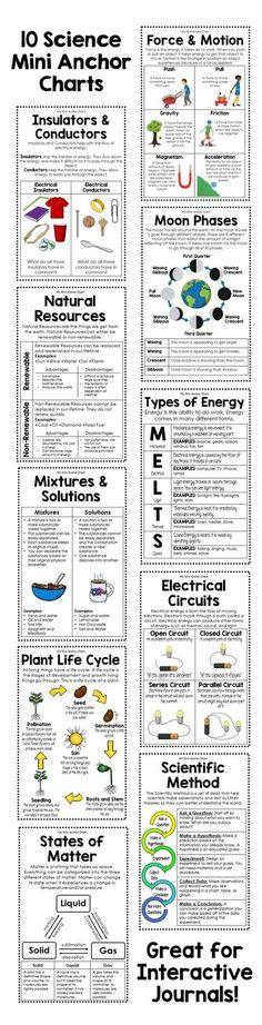 Get these 10 anchor charts to help your students remember important science concepts. Topics included: Force and Motion Insulators and Conductors Moon Phases The Water Cycle Plant Life Cycle Natural Resources Types of Energy The Scientific Method 8th Grade Science, Middle School Science, Elementary Science, Science Classroom, Teaching Science, Science Education, Science For Kids, Earth Science, Classroom Posters