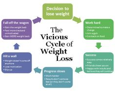 cycle of weight loss