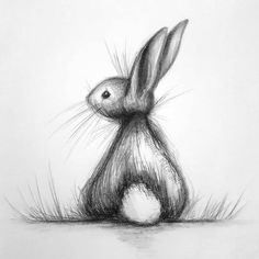 Art Drawings Sketches Simple, Pencil Art Drawings, Easy Drawings, Bunny Drawing, Bunny Art, Cute Animal Drawings, Animal Sketches, Drawing Animals, Bunny Sketches