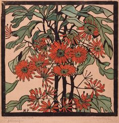 One of Margaret Preston's most exuberant prints, 'Wheel flower' represents the flower from the firewheel tree, Stenocarpus sinuatus, a native found in the coastal rainforests of Queensland and northern New South Wales. In her flower prints of the mid 1920s, ...