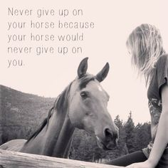Never give up on your horse, because your horse would never give up on you . Tumblr
