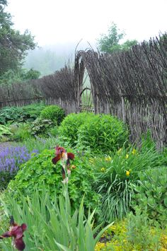Willow wattle fence made by artist Barbara Guy Long Fancy Fence, Wattle Fence, Willow Garden, Garden Structures, Garden Gates, Fencing, Garden Projects, Ontario, Lawns