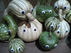 goggly eyes on Squash,
