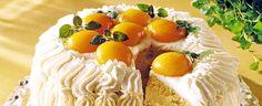 Saftig bløtkake med eggekrem og aprikos