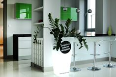 flower pots    http://terraform.pl/