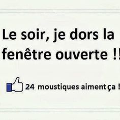 C est exactement sa! Lol, French Quotes, Just Smile, Laugh Out Loud, Words Quotes, Memes, Laughter, Funny Pictures, Funny Pics
