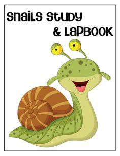 Free Snails Lapbook